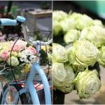 цветы вело